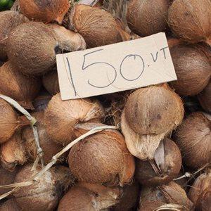 CoconutsPortVilaMarketcrop_1_300