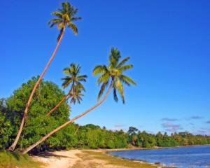 Erakor_Beach_Vanuatu_