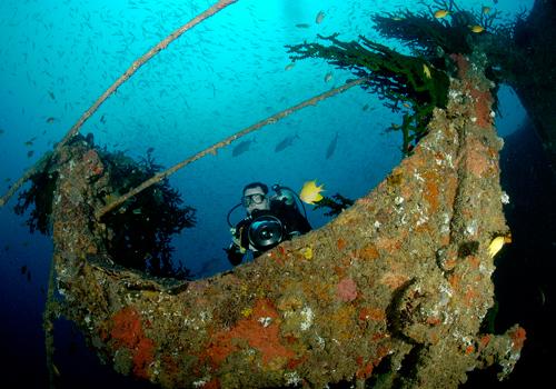 Diving-Life-Boats