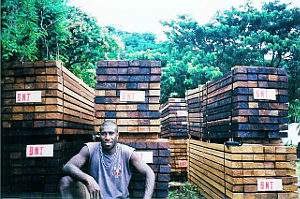 Frank_with_timber_for_export300