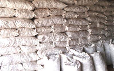 Vanuatu Kava Export Market Reopens