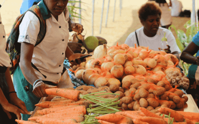 The rebirth and remaking of Tourism at 40 Years: Agritourism – the Linchpin?