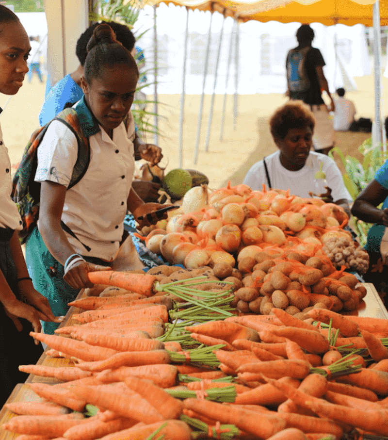 The rebirth and remaking of Tourism at 40 Years: Agritourism